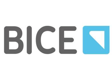 bice landing